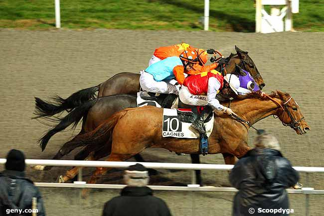 King Driver winning the Prix de Juan-les-Pins in Cagnes-sur-mer, Febuary 14, 2015. (Scoopdyga)