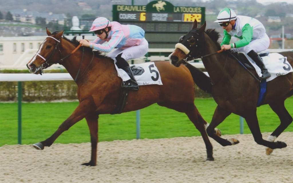 Eternal Gift taking the Prix de la Roche in Deauville, December 21, 2015. ScoopDyga