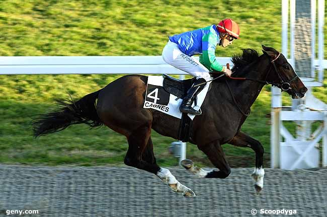Ray of Hope taking his second straight win, the Prix de l'Esterel, February 11, 2015, Cagnes-sur-mer. (Scoopdyga)